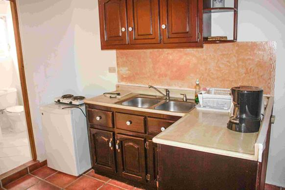 kitchen in palm room
